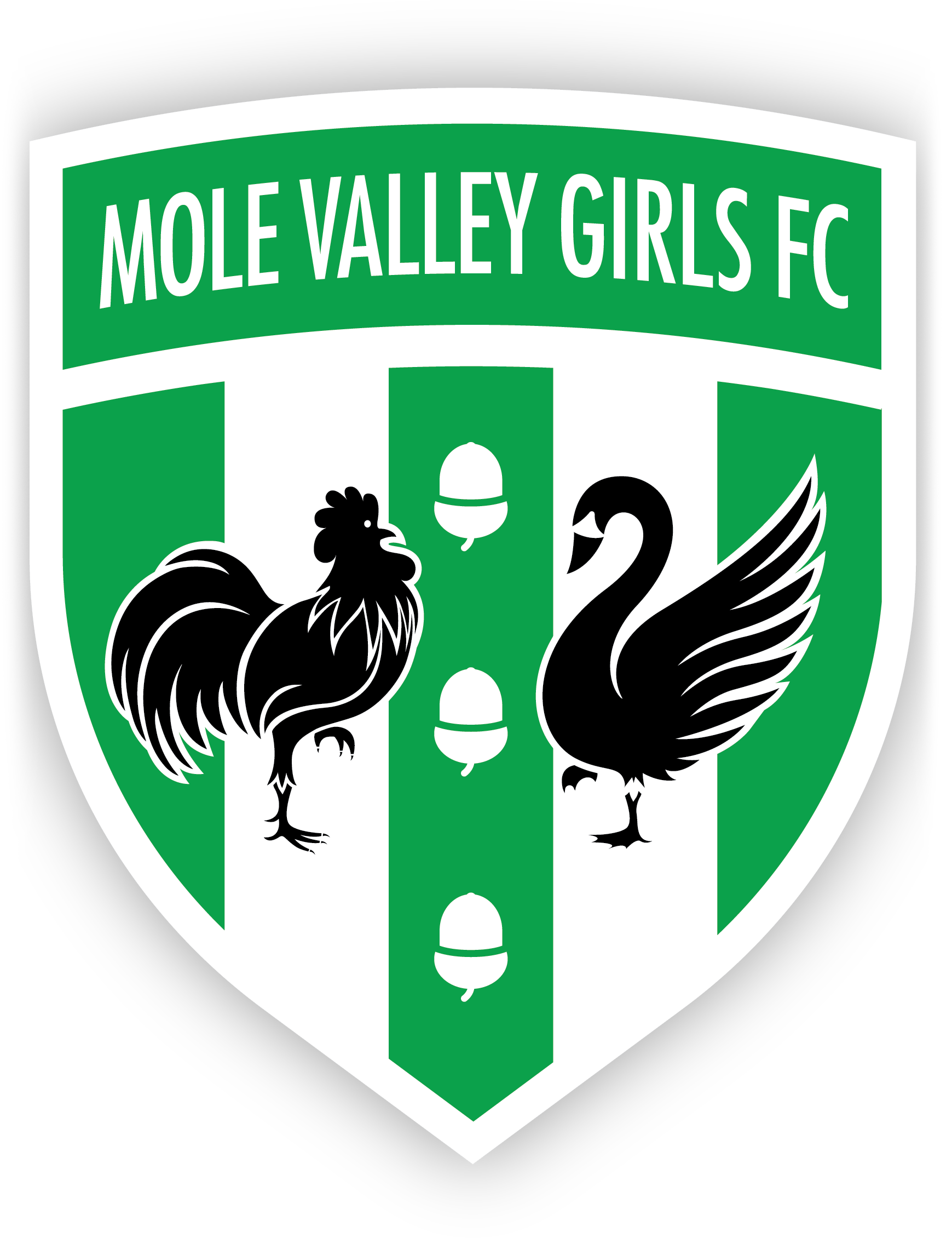 Mole Valley Girls FC